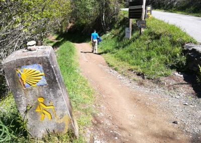 camino La faba