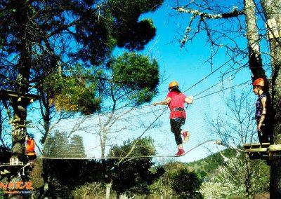 parque de arboles
